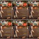 BSCA - Publicações Internacionais